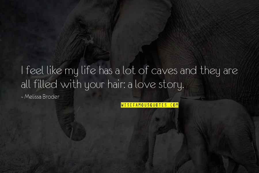 Story Love Quotes By Melissa Broder: I feel like my life has a lot