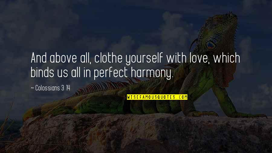 Straddled Quotes By Colossians 3 14: And above all, clothe yourself with love, which