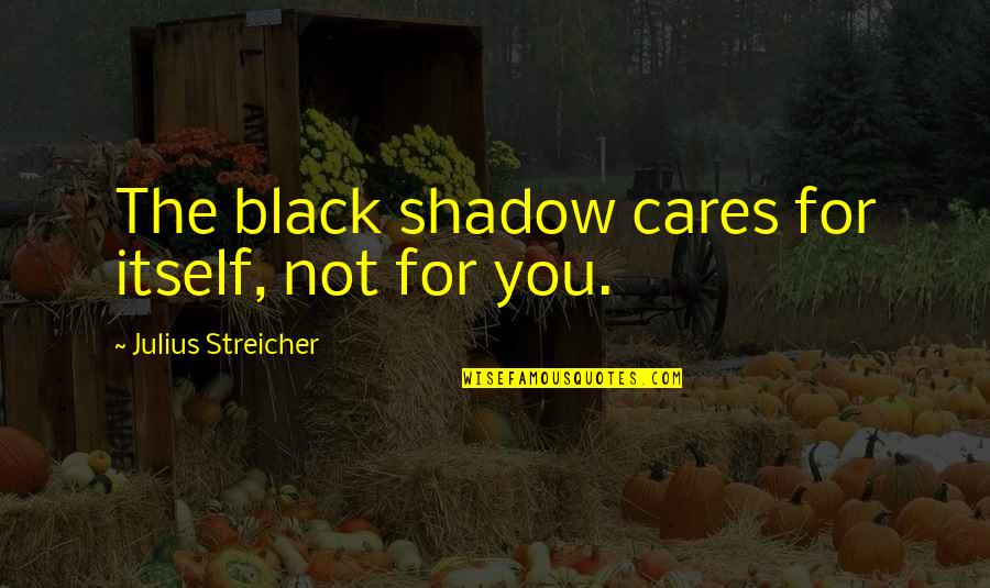 Streicher Quotes By Julius Streicher: The black shadow cares for itself, not for