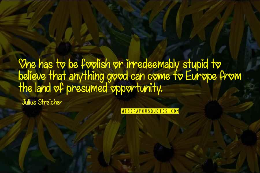 Streicher Quotes By Julius Streicher: One has to be foolish or irredeemably stupid