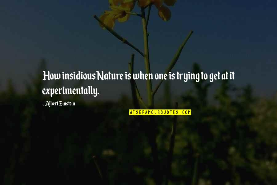 Strength And Flexibility Quotes By Albert Einstein: How insidious Nature is when one is trying