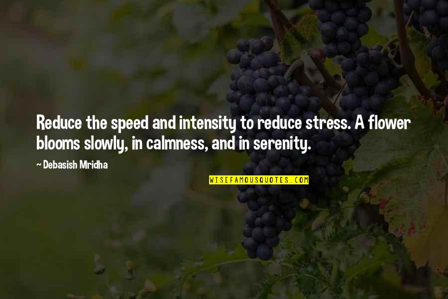 Stress Reduce Quotes By Debasish Mridha: Reduce the speed and intensity to reduce stress.