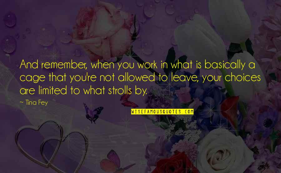 Strolls Quotes By Tina Fey: And remember, when you work in what is