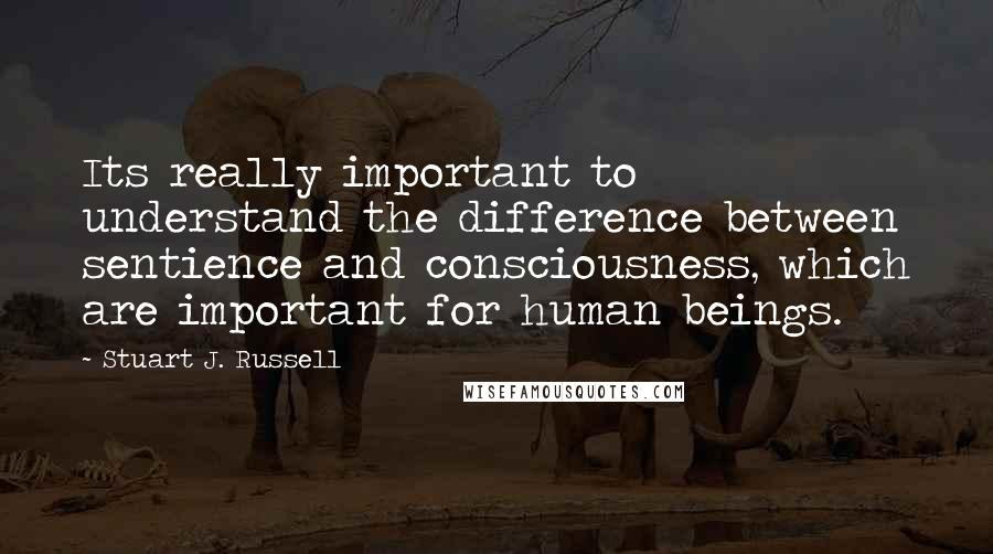 Stuart J. Russell quotes: Its really important to understand the difference between sentience and consciousness, which are important for human beings.