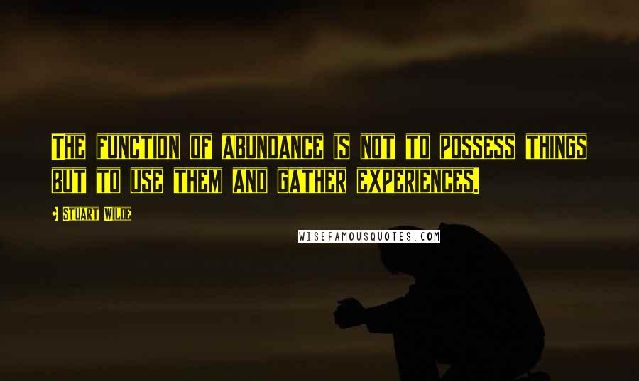 Stuart Wilde quotes: The function of abundance is not to possess things but to use them and gather experiences.