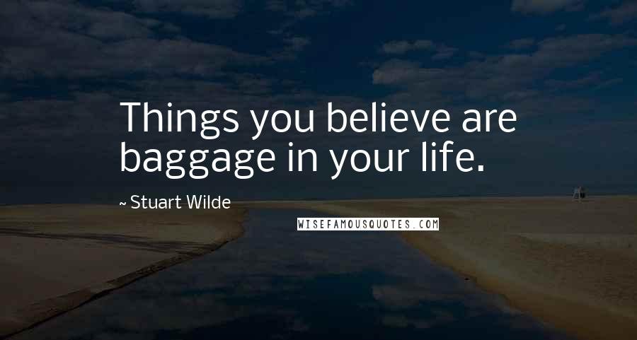 Stuart Wilde quotes: Things you believe are baggage in your life.