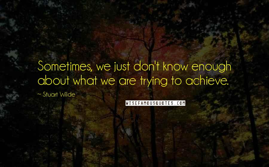 Stuart Wilde quotes: Sometimes, we just don't know enough about what we are trying to achieve.