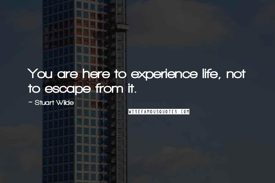 Stuart Wilde quotes: You are here to experience life, not to escape from it.