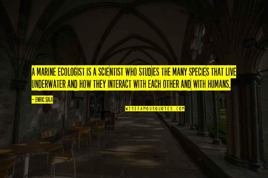 Studies Quotes By Enric Sala: A marine ecologist is a scientist who studies