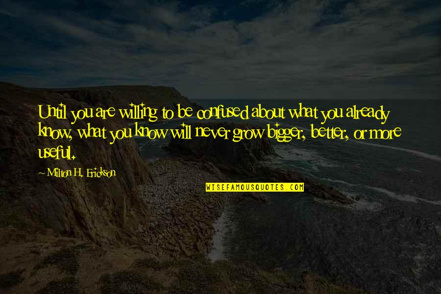 Stupid Voters Quotes By Milton H. Erickson: Until you are willing to be confused about