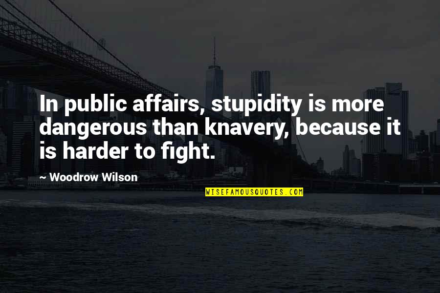 Stupidity In Government Quotes By Woodrow Wilson: In public affairs, stupidity is more dangerous than