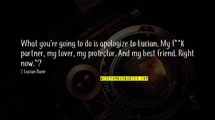 Sub Dom Quotes By Lucian Bane: What you're going to do is apologize to