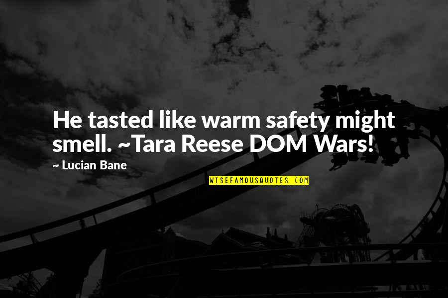 Sub Dom Quotes By Lucian Bane: He tasted like warm safety might smell. ~Tara