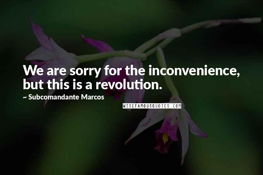 Subcomandante Marcos quotes: We are sorry for the inconvenience, but this is a revolution.