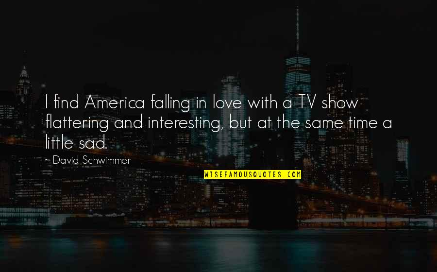 Subtenant Quotes By David Schwimmer: I find America falling in love with a