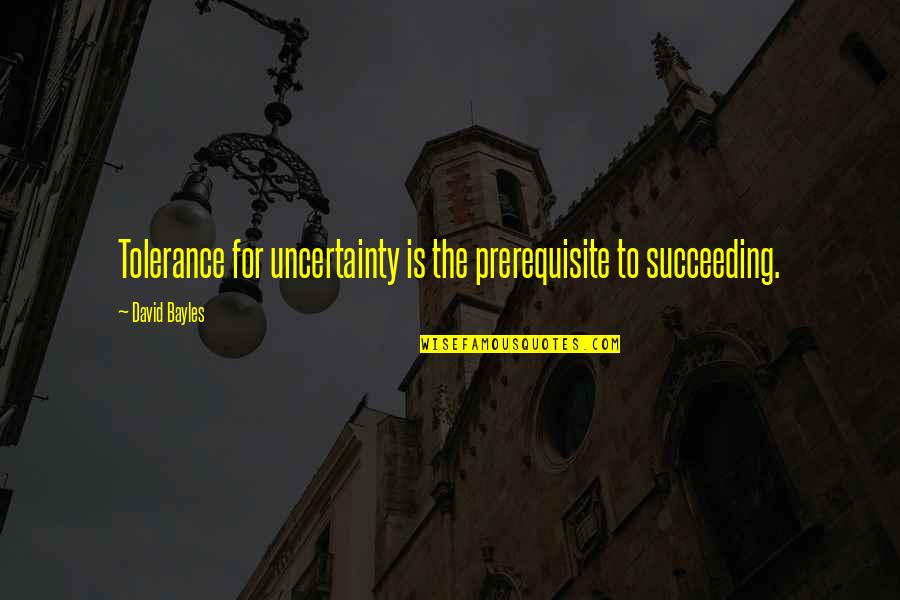 Succeeding Quotes By David Bayles: Tolerance for uncertainty is the prerequisite to succeeding.