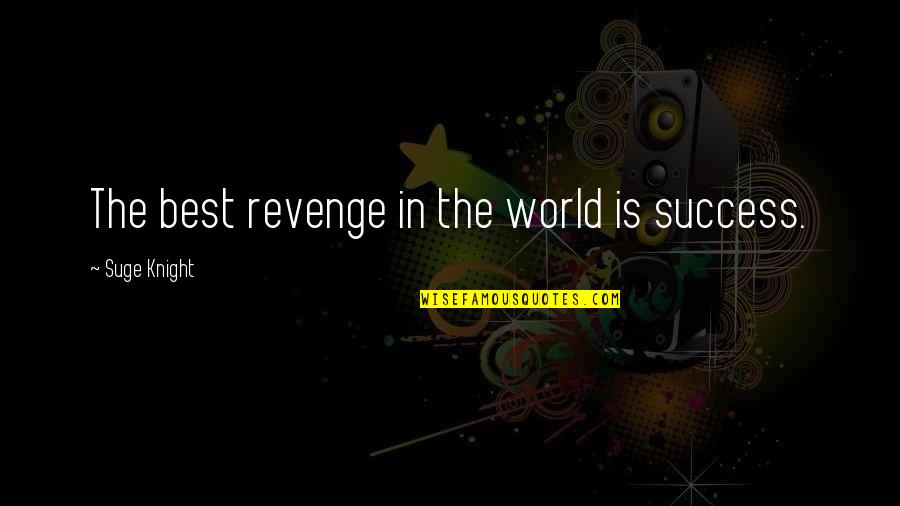 Success Best Quotes By Suge Knight: The best revenge in the world is success.