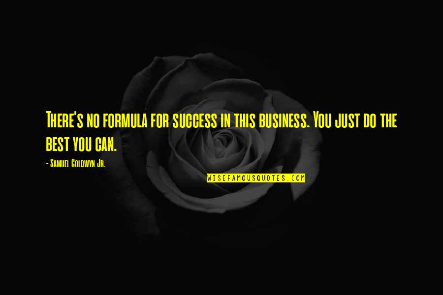 Success Formula Quotes By Samuel Goldwyn Jr.: There's no formula for success in this business.