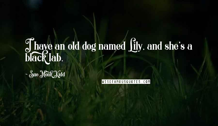 Sue Monk Kidd quotes: I have an old dog named Lily, and she's a black lab.