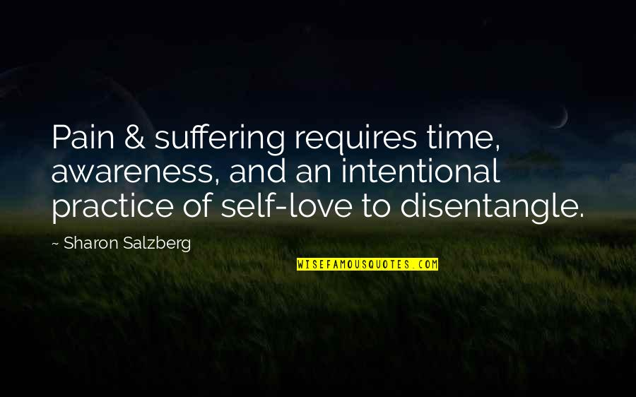 Suffering And Healing Quotes By Sharon Salzberg: Pain & suffering requires time, awareness, and an