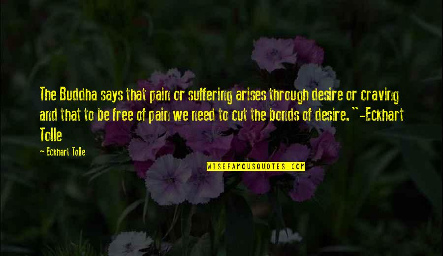 Suffering Buddha Quotes By Eckhart Tolle: The Buddha says that pain or suffering arises