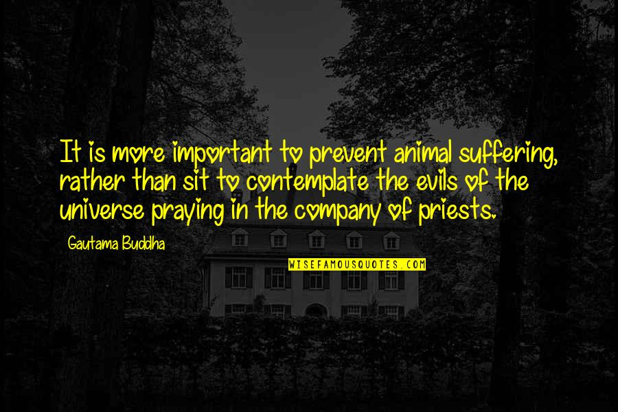 Suffering Buddha Quotes By Gautama Buddha: It is more important to prevent animal suffering,
