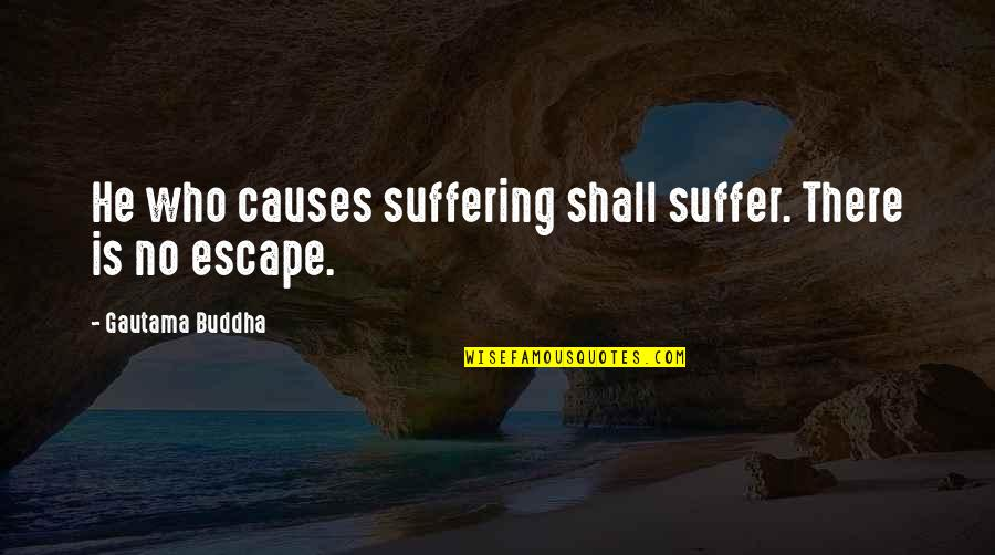 Suffering Buddha Quotes By Gautama Buddha: He who causes suffering shall suffer. There is