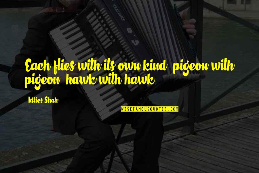 Sufism Quotes By Idries Shah: Each flies with its own kind: pigeon with