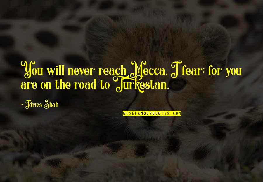 Sufism Quotes By Idries Shah: You will never reach Mecca, I fear: for