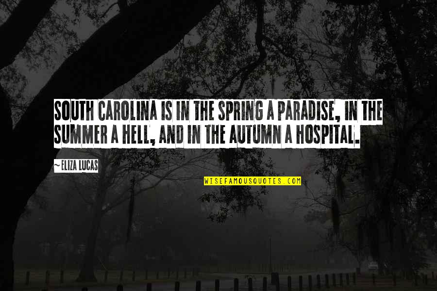Summer And Spring Quotes By Eliza Lucas: South Carolina is in the spring a paradise,