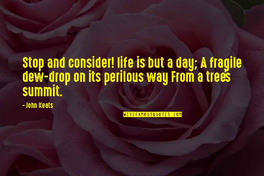 Summit's Quotes By John Keats: Stop and consider! life is but a day;