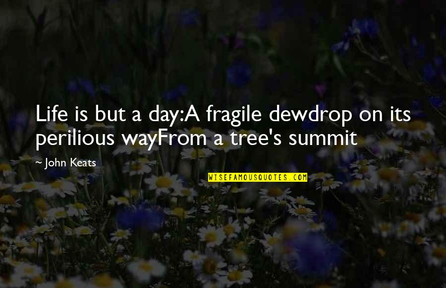 Summit's Quotes By John Keats: Life is but a day:A fragile dewdrop on