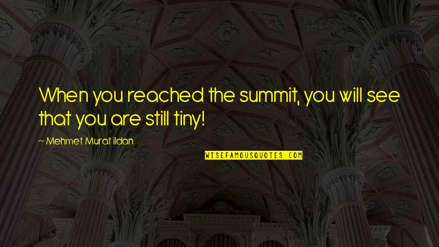 Summit's Quotes By Mehmet Murat Ildan: When you reached the summit, you will see