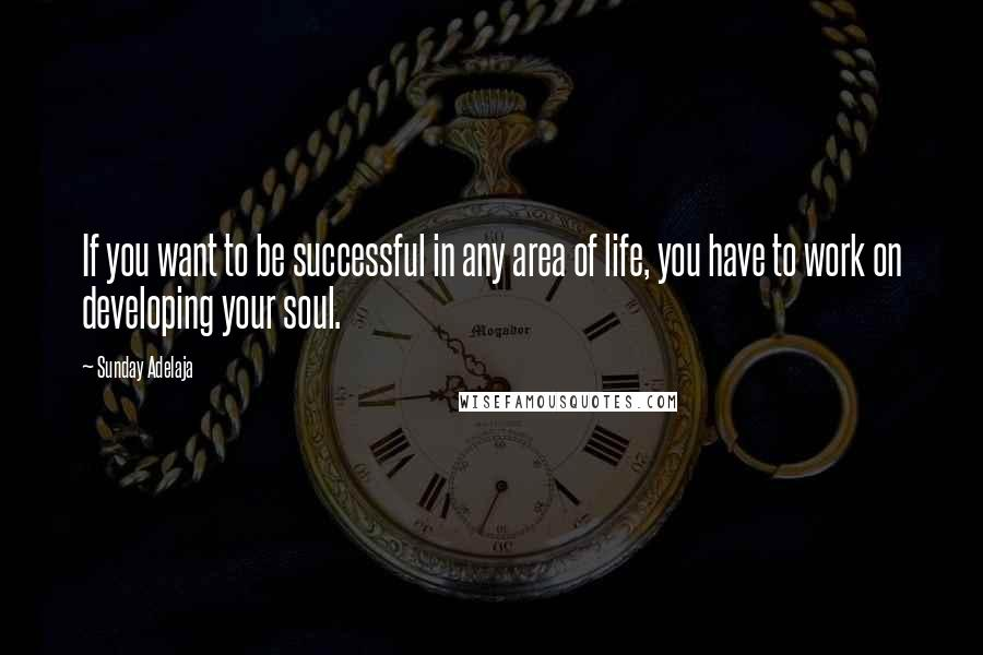 Sunday Adelaja quotes: If you want to be successful in any area of life, you have to work on developing your soul.