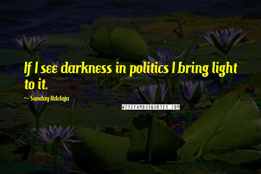 Sunday Adelaja quotes: If I see darkness in politics I bring light to it.