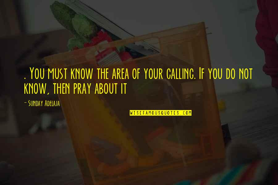Sunday Quotes By Sunday Adelaja: . You must know the area of your