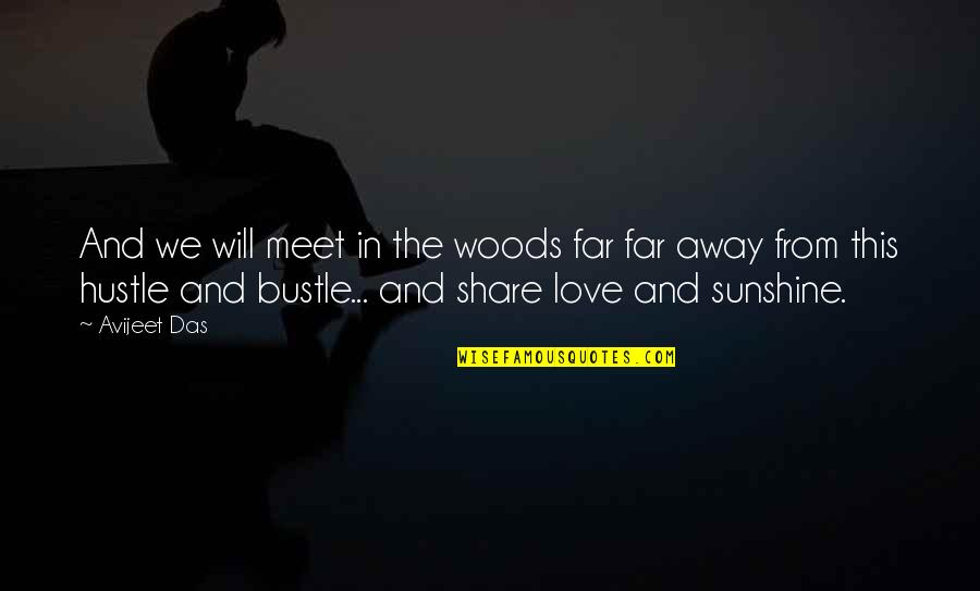 Sunshine Quotes And Quotes By Avijeet Das: And we will meet in the woods far