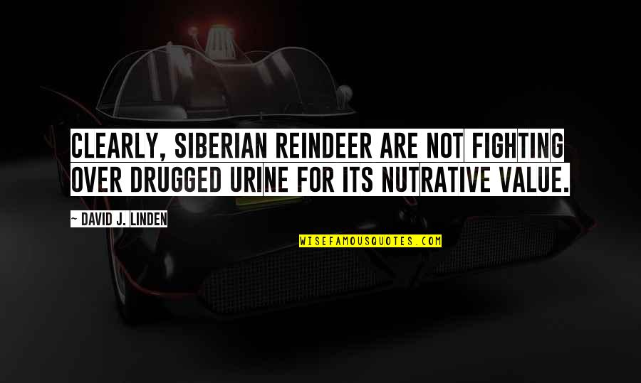 Super Saiyan Goku Quotes By David J. Linden: Clearly, Siberian reindeer are not fighting over drugged