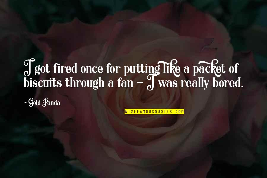 Super Sonico Quotes By Gold Panda: I got fired once for putting like a