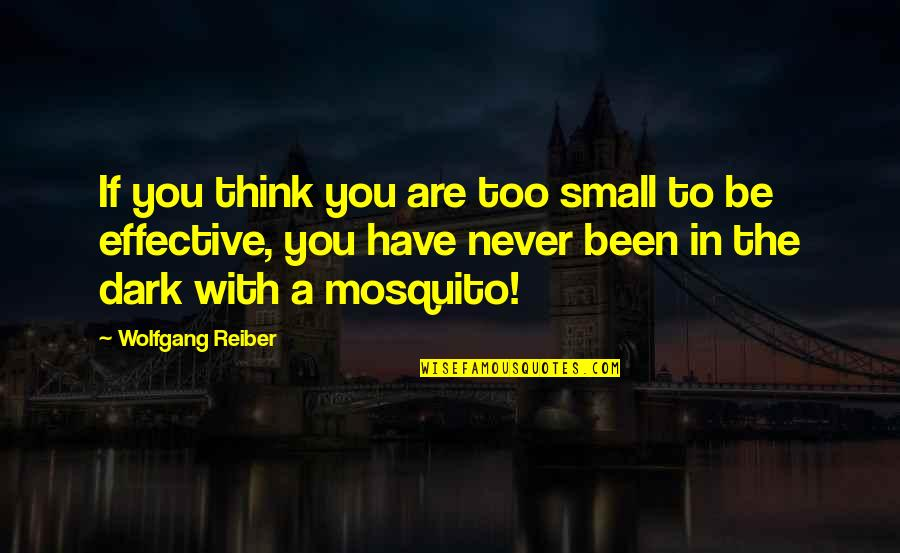 Superbikes Quotes By Wolfgang Reiber: If you think you are too small to