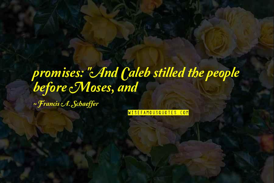 "Superheated Quotes By Francis A. Schaeffer: promises: ""And Caleb stilled the people before Moses,"