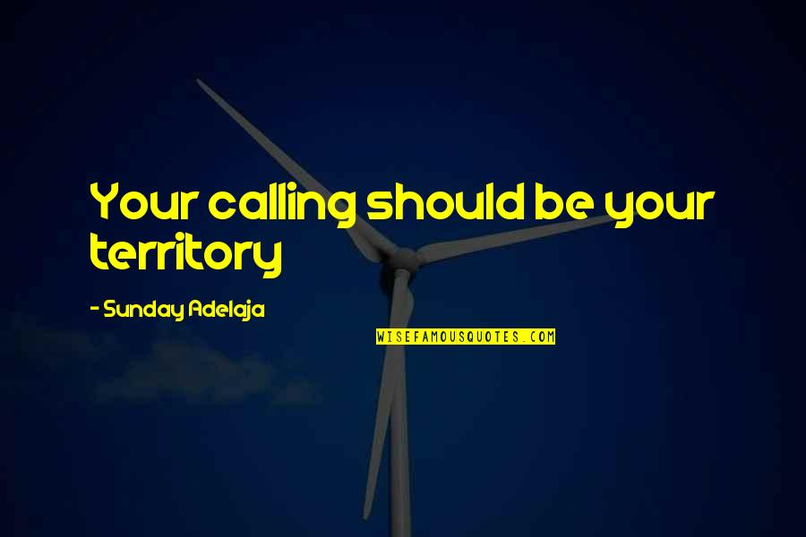Superman Fortress Of Solitude Quotes By Sunday Adelaja: Your calling should be your territory