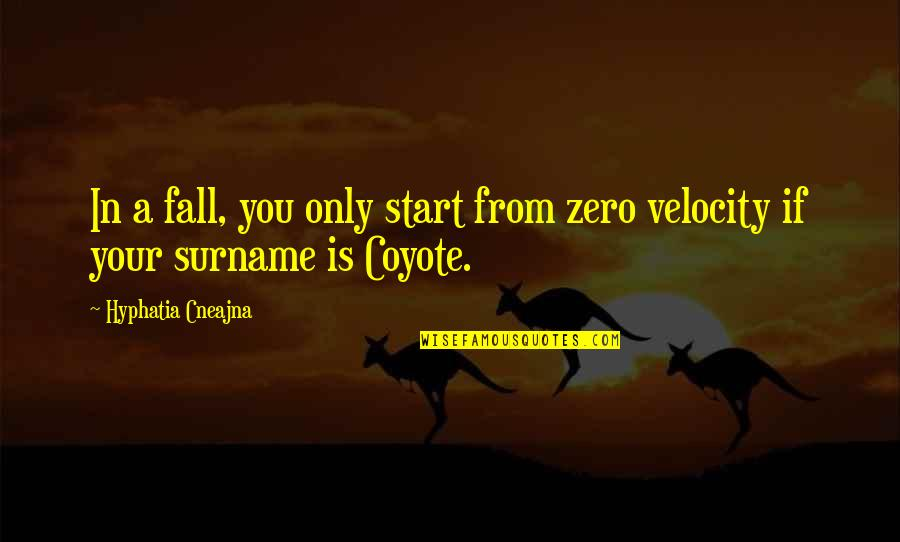 Surname Quotes By Hyphatia Cneajna: In a fall, you only start from zero