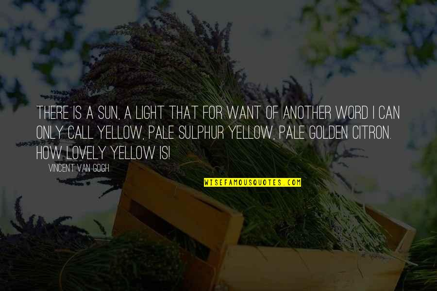 Survival Hunger Games Quotes By Vincent Van Gogh: There is a sun, a light that for