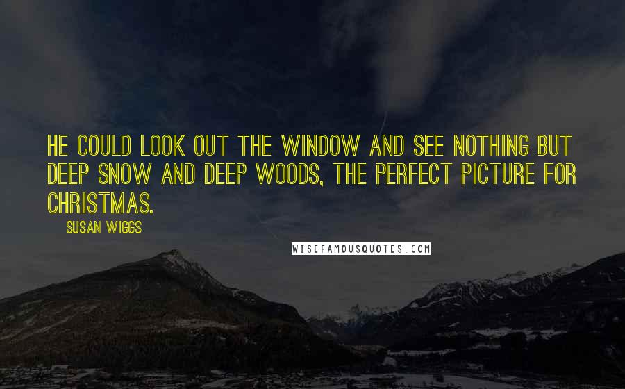 Susan Wiggs quotes: He could look out the window and see nothing but deep snow and deep woods, the perfect picture for Christmas.