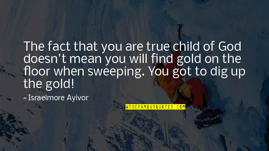 Sweep Quotes By Israelmore Ayivor: The fact that you are true child of