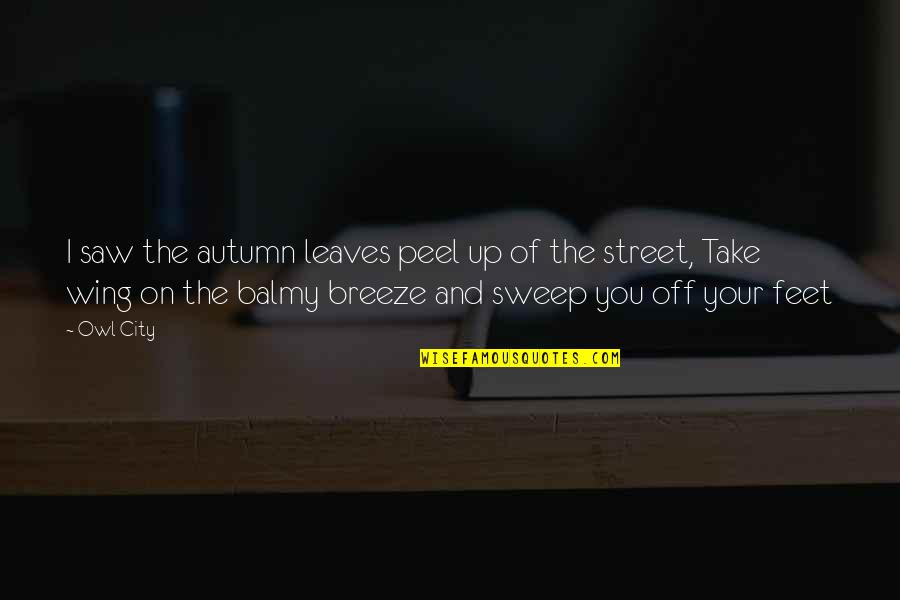 Sweep Quotes By Owl City: I saw the autumn leaves peel up of