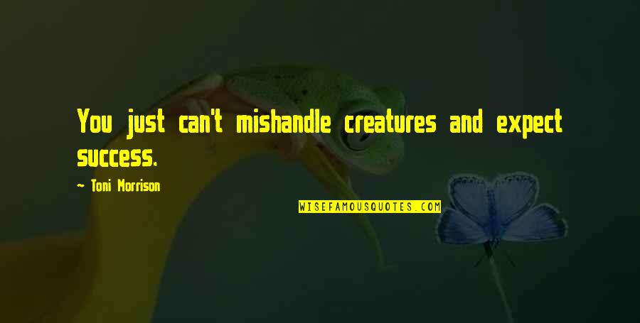 Sweepus Quotes By Toni Morrison: You just can't mishandle creatures and expect success.