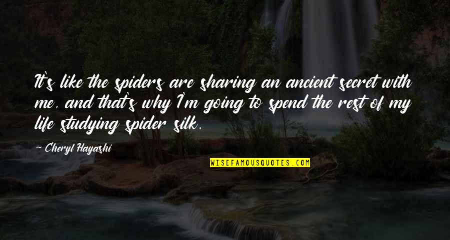 Sweet Bubbly Quotes By Cheryl Hayashi: It's like the spiders are sharing an ancient