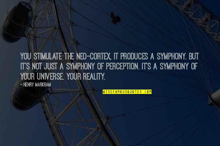 Symphony's Quotes By Henry Markram: You stimulate the neo-cortex, it produces a symphony.